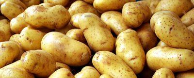 potato2-620×250