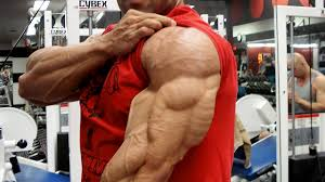 ripped triceps