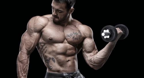 TestoFuel for building muscle